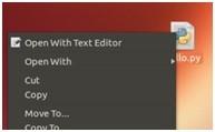 Creare e avviare script python in linux ubuntu 3